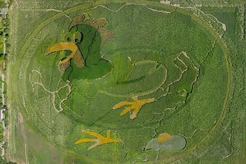 Luftbild des BfR-Eilands